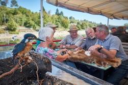 RheinErfahren Aqua Viva URh Hochrhein Wasser Flora Fauna Vogelsanger 3