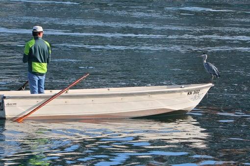 2 Fischer mit Graureiher IMG_4789-1