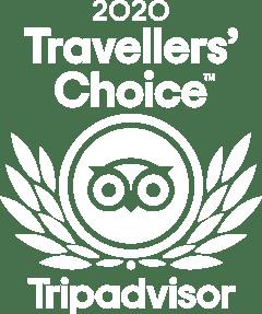 TC_2020_LL_KNOCKOUT_BG_RGB